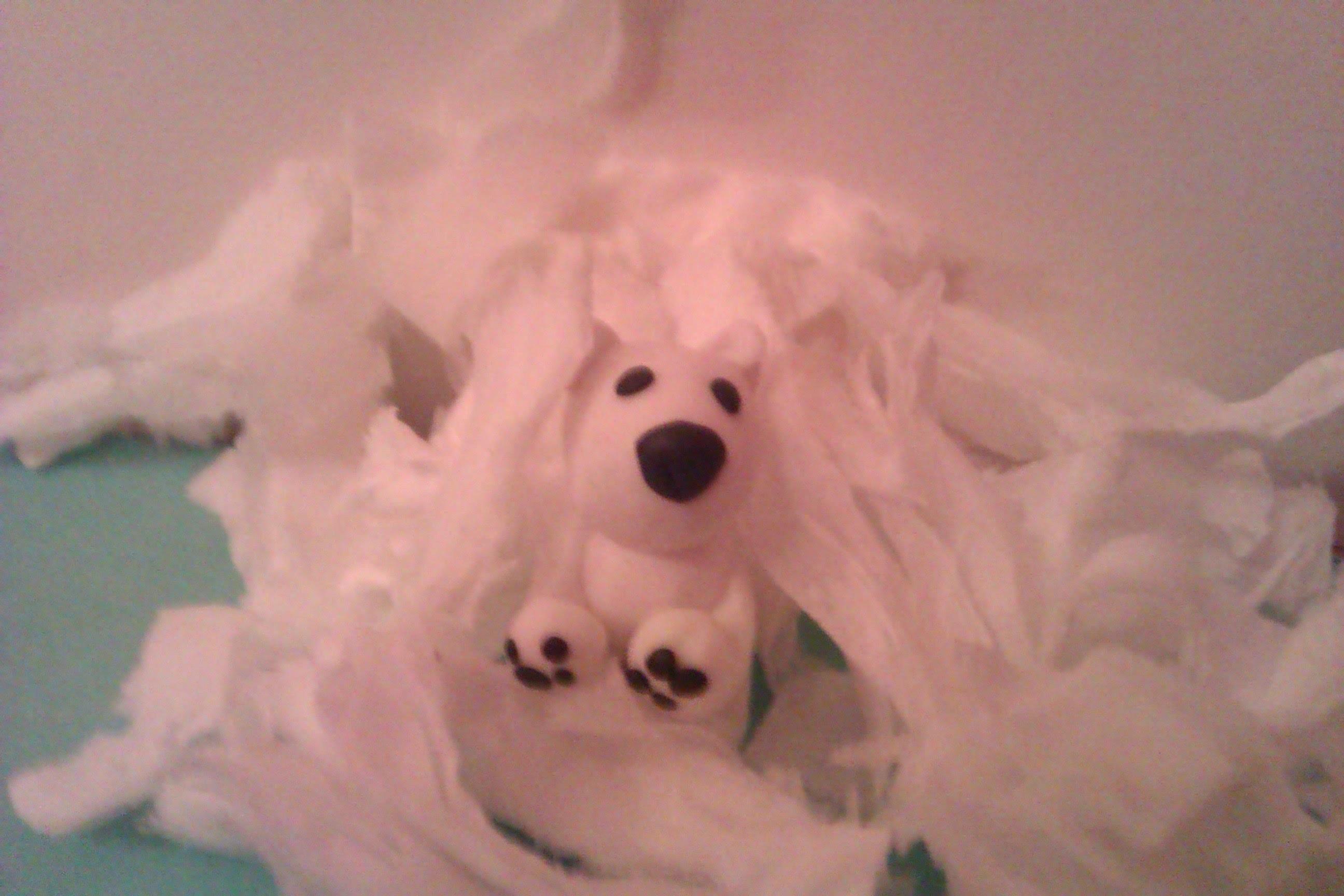 Craft Art - jak zrobić niedźwiedzia polarnego  z modeliny :)