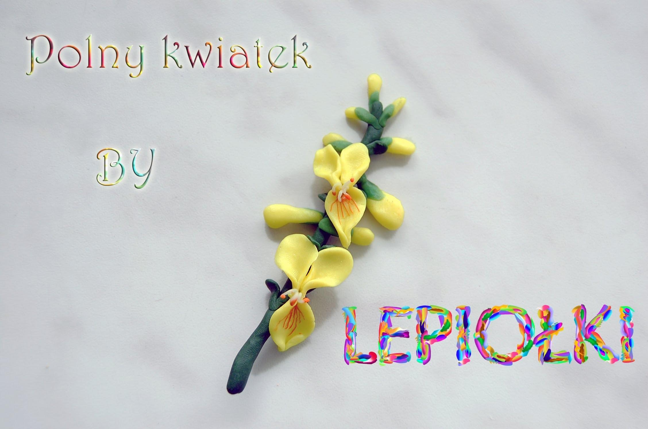 Realistyczny polny kwiat, Realistic flower field TUTORIAL, polymer clay, made hand