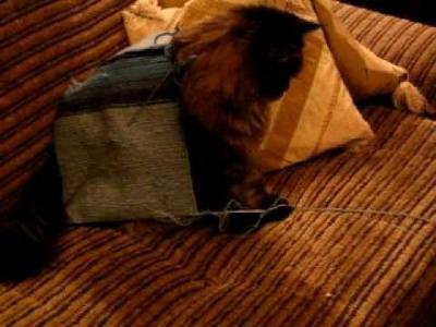 Robótki na drutach cioci Bajry