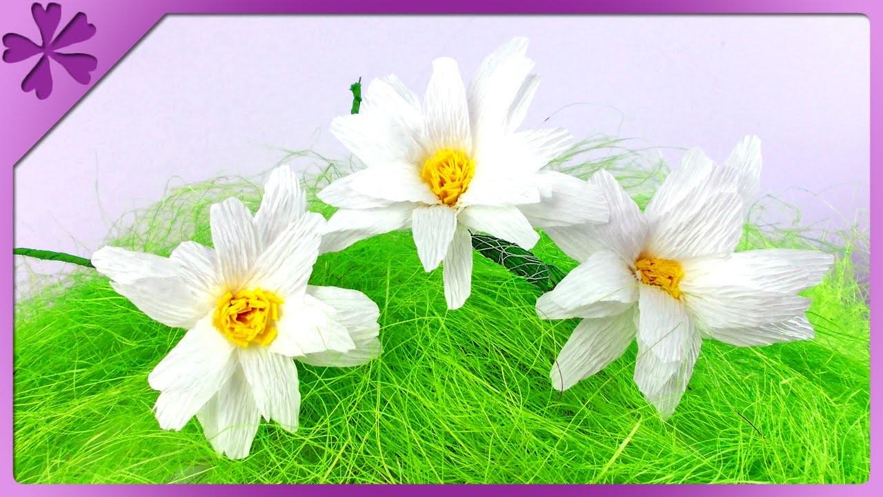 DIY Margaretki z bibuły. Tissue paper daisy (+ENG Subtitles) - Na szybko #116
