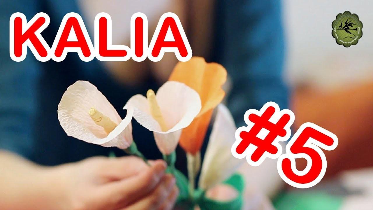 Kwiatki z bibuły #5 - kalia
