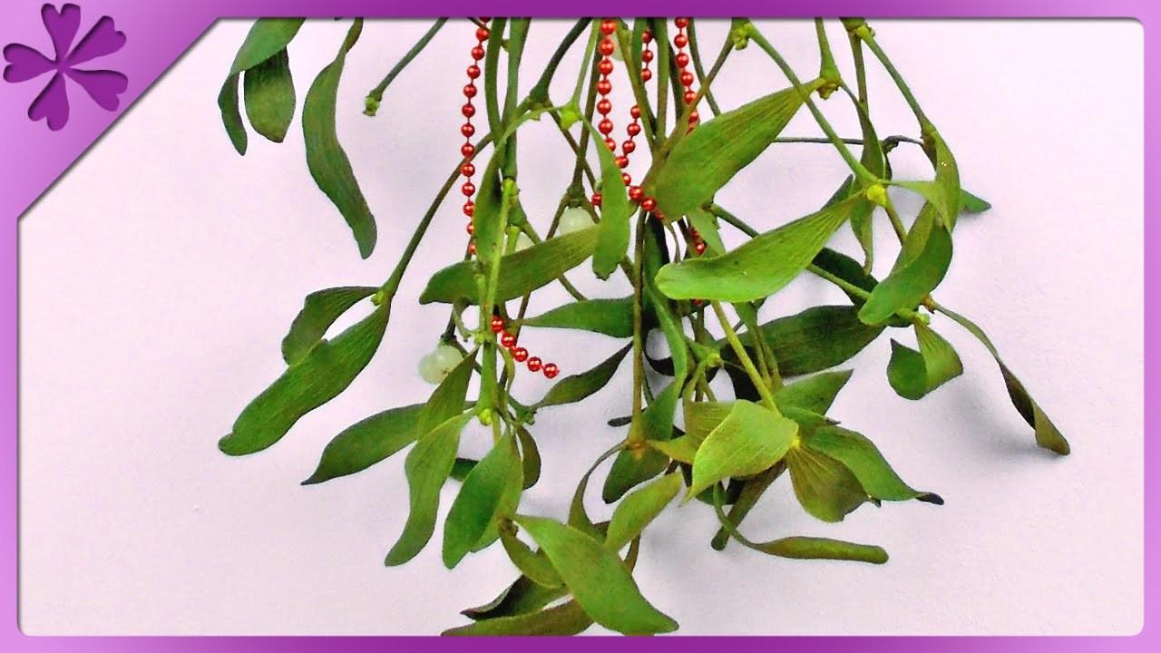 DIY Dekoracja z jemioły. Mistletoe decoration (+ENG Annotations) - Na szybko #53