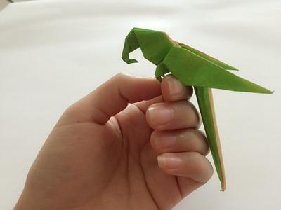 Jak zrobić Papuga z papieru origami - krok po kroku po polsku