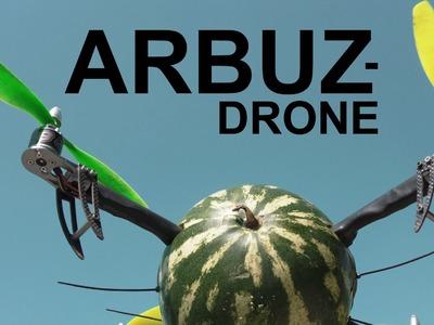 DIY Arbuz-drone!