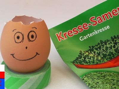 DIY International | Zabawna głowa z jajka z włosami z rzeżuchy | zabawny pomysł o zrobienia samemu