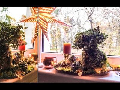 Sposób na.  roślinę w kuli z mchu. DIY KOKEDAMA aka. Moss Ball aka. String Garden