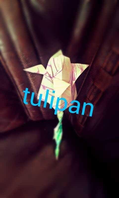 Poradnik jak zrobić tulipana z papieru - origami ♥