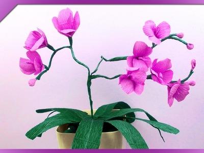 DIY Storczyk z bibuły. Tissue paper orchid (+ENG Subtitles) - Na szybko #113
