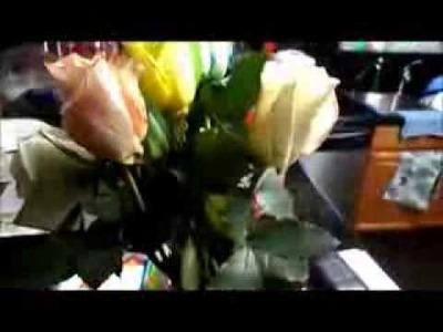 Jak zrobić tęczową różę? - How To Make Rainbow Roses?