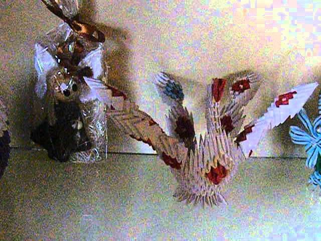 Moje prace z origami modułowego pawie i inne
