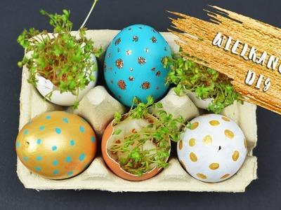 WIELKANOCNE DIY: malowanie pisanek i rzeżucha w skorupce jajka
