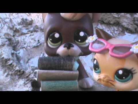 Littlest Pet Shop: ↯ Piąty Wymiar ↯ #1 (Poznajmy się!)