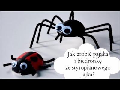Biedronka i pająk ze styropianowego jajka. Spring Craft DIY