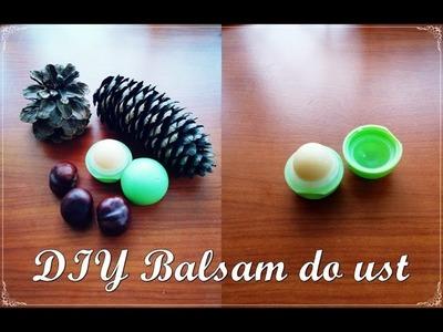 """DIY Balsam do ust """"jajeczko""""."""