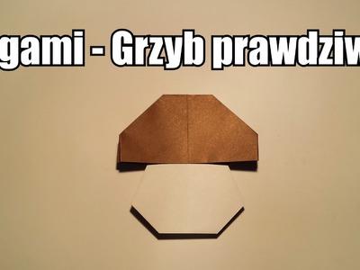 Origami - Grzybek prawdziwek