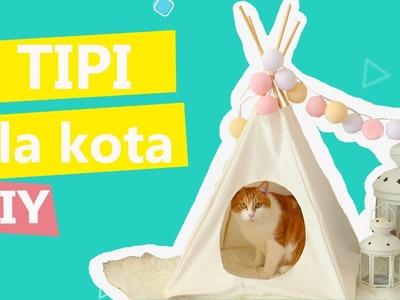 Tipi dla kota DIY, kanapkowe kotki, sprzątanie sierści | Twoje DIY #5